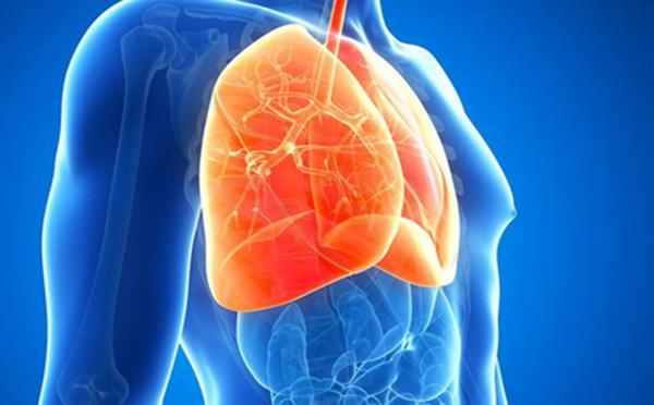 肺纤维化病因有四大类——看看专家的观点