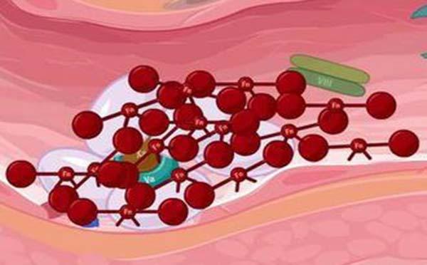 专家为您解答血友病人会有什么样的危害