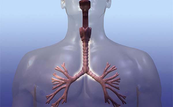 专家提醒您这六种症状泄露喉癌踪迹