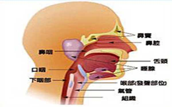 专家告诉您口腔颌面肿瘤的危险症状